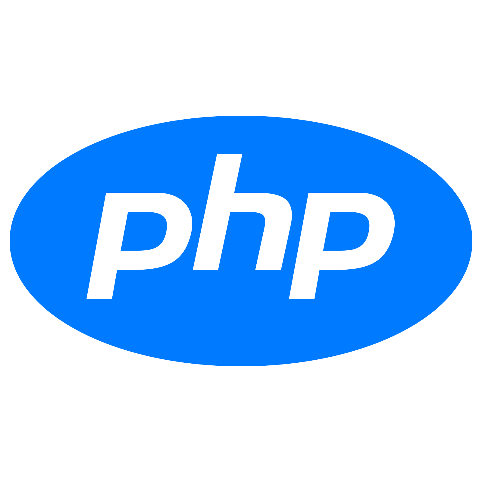 PHP Web Designing Company in Patna and delhi